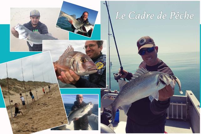 Balades et pêches en mer